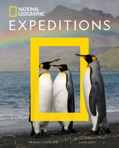 Explore the world with National Geographic's experts on a variety of unique and engaging trips, from wildlife safaris and expedition cruises to photography expeditions and family trips. National Geographic Expeditions, National Geographic Travel, Book Photography, Wildlife Photography, Animal Photography, National Geographic Photography, Family Travel, Family Trips, Typography Poster Design