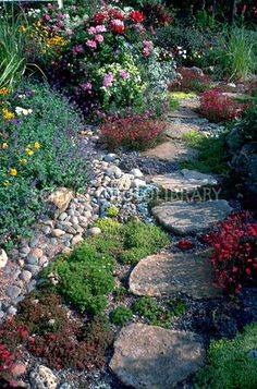 Rock garden for side of house. No, no! Just those huge whatever they are stepping stones.