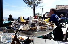 Dégustation Huîtres Cap Ferret Oysters