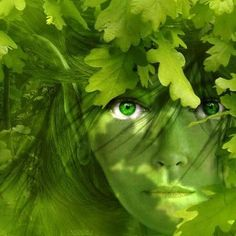 11 étapes pour communiquer avec les esprits de la nature Les esprits de l'air (elfes, sylphes, fées de l'air…), les esprits de l'eau (ondins, ondines, vouivres, fées de l'eau…), les esprits du feu …