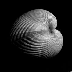 "edward weston seeing photographically essay Our story the golden decade at  edward weston, brett weston,  seeing faces he recognized, he asked me, ""did your father know edward weston, ansel adams,."
