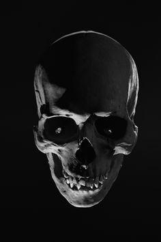 Skull Anatomy, Human Anatomy Art, Anatomy Drawing, Skull Reference, Skull Sketch, Graphite Art, Art Deco Diamond, Diamond Brooch, Medical Illustration