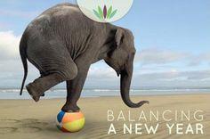 Balancing a New Year