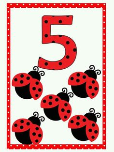 Number Flashcards, Flashcards For Kids, Kids Math Worksheets, Math Numbers, Preschool Activities, Preschool Math, Kindergarten Classroom, Little Girl Cartoon, Baby Ladybug