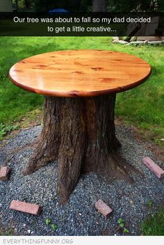 funny dad turns tree stump into table