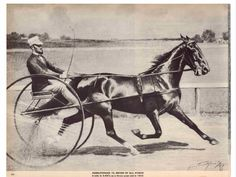 Hambletonian 10, Standardbred Sire, Horse, Sulky by George Ford Morris  1952