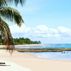 It has crossed your mind at least once ... You, #Brazil, a beach, sipping on some fresh coconut water #beachthursday #traveltheworld #wanderlust #bucketlist