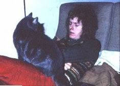 David Bowie and Cats