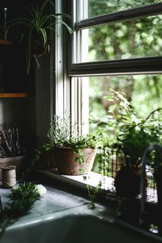 Image about nature in / windows, room, home / by ru-th Deco House, Elsie De Wolfe, Sweet Home, Window View, Open Window, Through The Window, Slow Living, Humble Abode, Architecture