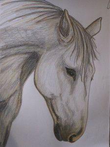 """""""het witte paard"""" would love this in my room"""