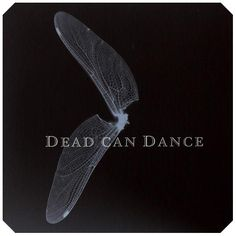 Dead Can Dance...amazing music..so beautiful,  you want to cry... seriously