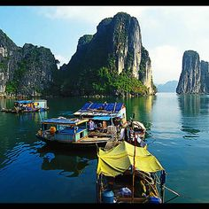 Toured Ha Long Bay, Vietnam. Then travelled the length of the country. Ate lots of noodle soup.