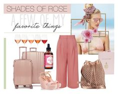 """Shades of Rose"" by sineo-1 on Polyvore featuring Mode, Beach Riot, TIBI, Mark Cross, nooki design, CalPak und Fratelli Karida"