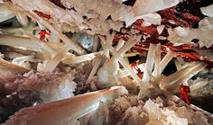 Giant crystal cave in Nacia, Mexico - 15 Things You Won't Believe Actually Exist In Nature