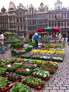 Flower market at Grand Place, Bruxelles. this is so beautiful to experience ~~ Would love to visit a flower market~