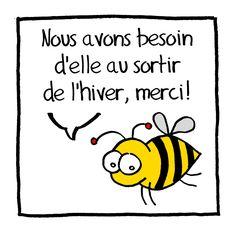 abeille-pissenlit.jpg (1000×992)