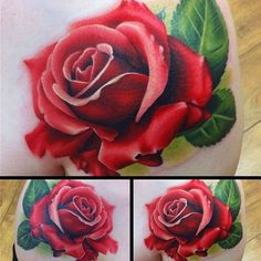New Ideas For Tattoo Designs Rose Realistic Feather Tattoos, Flower Tattoos, Body Art Tattoos, Girl Tattoos, Tattoos For Guys, Pretty Tattoos, Beautiful Tattoos, Floral Tattoo Design, Tattoo Designs