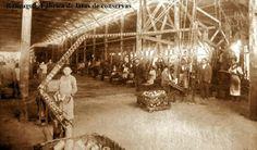 Imágenes de Chile del 1900: Rancagua. Trabajadores al interior de la fábrica de latas de conservas de Rancagua, probablemente perteneciente al empresario Nicolás Rubio.