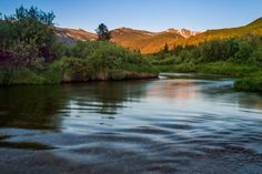 South Fork of the Cache la Poudre River on the #ColoradoState Pingree Park Campus.