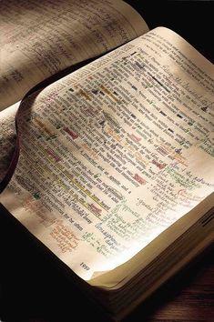 a Precepts-marked Bible.  Beautiful.