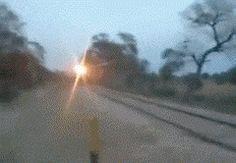 Esse mestre da zoeira que sacaneou um trem inteiro