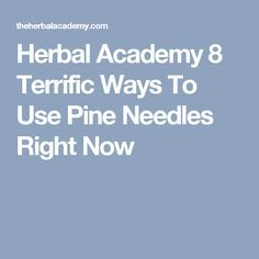 Herbal Academy 8 Terrific Ways To Use Pine Needles Right Now