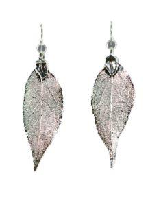 Real elm leaf earrings
