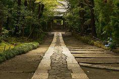 寿福寺 鎌倉五山 第三位のお寺。ひっそりとしたお寺ですが山門からまっすぐのびた石畳がとても印象的。