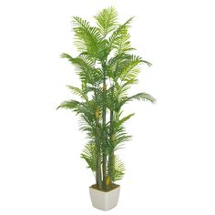 GNW home decoration artificial plant Small Palm Trees, Artificial Plants, Cactus Plants, Hawaii, Exterior, Leaves, Decoration, Decor, Fake Plants