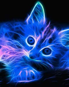 157 Best Neon Animals Images Fractals Baby Kitty Cat Art