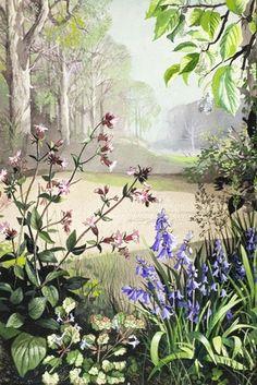 Ground Ivy, Bluebell, Red Campion Floral Illustrations, Children's Book Illustration, Botanical Illustration, Edith Holden, Oak Tree Tattoo, Ladybird Books, Vintage Birds, Whimsical Art, History Books