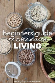 The Beginners Guide to Zero Waste Living - Going Zero Waste - Going Zero Waste: eco friendly lifestyle tips, recipes, and diys - conscious Be Natural, Natural Living, Simple Living, Green Living Tips, Green Tips, Go Green, Bulk Food, Sustainable Living, Zero Waste
