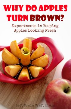 Why Do Apples Turn Brown? + Love to Learn Linky #7 - Left Brain Craft Brain. Steps for science experiment