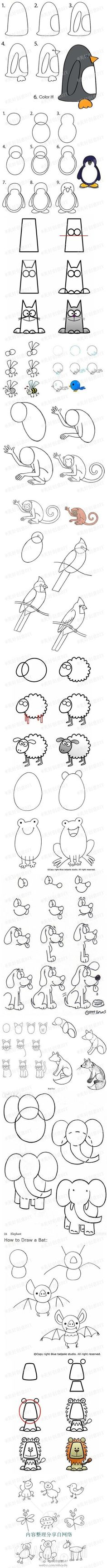 Drawing animals @ MyHomeLookBookMyHomeLookBook