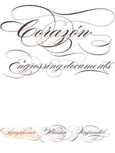 Burgues Script was inspired the penmanship of 19th century calligrapher Louis Madarasz. Designed by Alejandro Paul