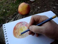 Drawing of apple using Derwent Inktense colour pencils