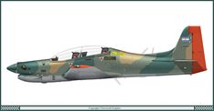 Tucano EMB-312 - Argentine Air Force 1991
