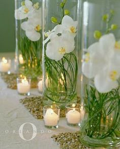 orchid wedding centerpieces wedding flowers - Page 63 of 101 - Wedding Flowers & Bouquet Ideas Orchid Centerpieces, Table Centerpieces, Centerpiece Ideas, Elegant Centerpieces, Vase Ideas, Vases Decor, Summer Wedding Colors, Deco Floral, Wedding Decorations