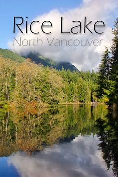 Rice Lake in the Lower Seymour Conservation Reserve in North Vancouver is a fun, easy and family-friendly hike you can do year-round. Vacation Trips, Day Trips, Rice Lake, Hiking Routes, North Vancouver, Travel Oklahoma, Picnic Area, Best Hikes, New York Travel