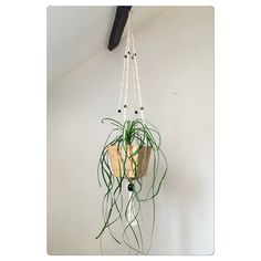 plus de 1000 id es propos de suspension plante cache. Black Bedroom Furniture Sets. Home Design Ideas