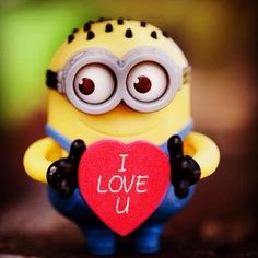 Minion Words, Cute Minions, Encouraging Thoughts, Hamtaro, Minions Quotes, Despicable Me, Cartoon Pics, Uplifting Quotes, Funny Cartoons