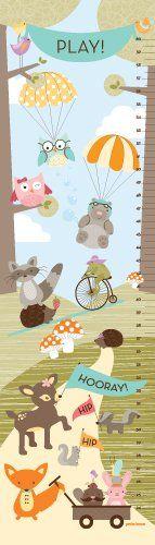 Woodland Fun Animals (Aqua Banner) Canvas Growth Chart by Petite Lemon Petite Lemon http://www.amazon.com/dp/B005AKDJO4/ref=cm_sw_r_pi_dp_mpa0tb0CKG9VZ19K