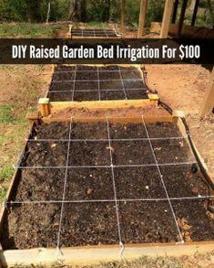 die besten 25 raised garden beds irrigation ideen auf pinterest tropfbew sserungssystem. Black Bedroom Furniture Sets. Home Design Ideas