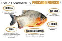 ¿Cómo reconocer un pescado fresco?