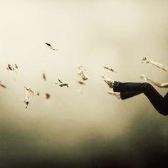 "Saatchi Online Artist: Martin Stranka; C-Type, Photography ""I Was Falling High (edition of 25)"" #art"