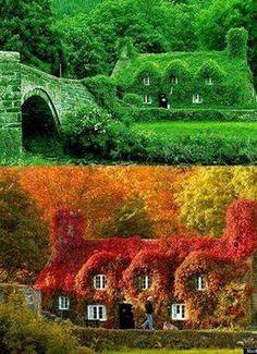 A mesma casa de campo na Inglaterra, fotografada durante o verão e o outono.