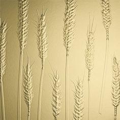 Harvest + Sahara Design Boards, Harvest, Resin, Collections, Architecture, Decor, Arquitetura, Decoration, Architecture Illustrations
