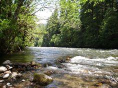 McKenzie River, Oregon (Paradise Campground)