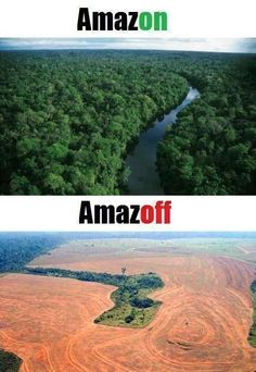 In anticipation of Earth Day, here's a link to learn more about deforestation: Because we're sure everyone agrees we much prefer the Amazon ON! http://www.edf.org/blog/2013/03/20/tragedy-and-transformation-deforestation-amazon-part-1
