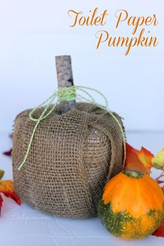 A roll of toilet paper and your favorite ribbon is all you need for this simple Fall decoration!